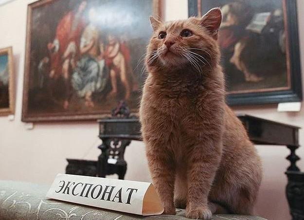 cat_russia-e1460192454289